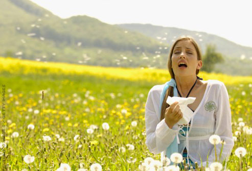 Hayfever and Homeopathy Part 1