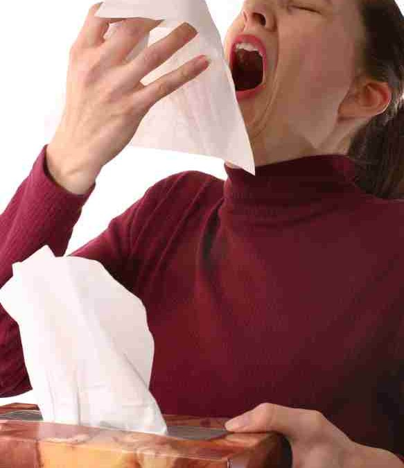 Hayfever and Homeopathy Part 2